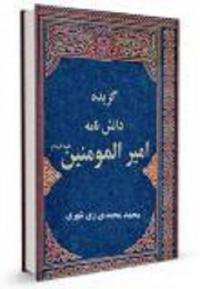 ترجمه مناقب الامام علی بن ابیطالب، ابن مغازلی