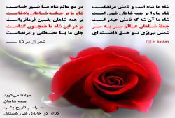 مولانا: همه شاهان تاریخ، گدای در خانه علی هستند - شعر مولانا درباره حضرت علی