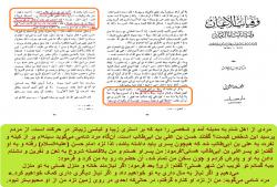 رفتار امام حسن مجتبی با فرد فحاش شامی